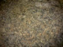 Granito Orbicular (Rara)