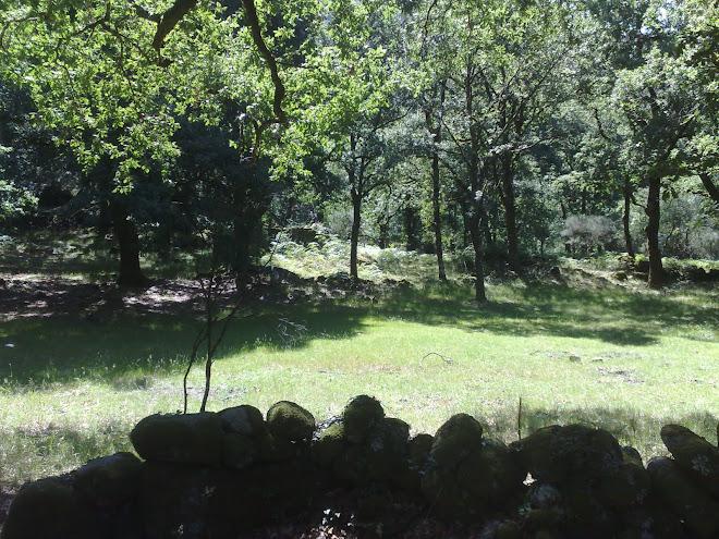 Curral de S. Miguel - utilizado em tempos pelas gentes de Vilarinho da Furna