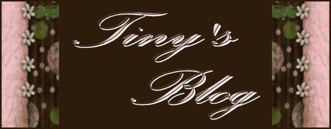 tiny's blog