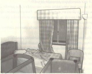 Chapter 11: Analysis of a crime scene, apartment 5A MaddieWindow