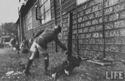 Execution+of+Nazi+collaborationist+Milice+%28Vichy+police%2902 Foto Eksekusi Mati Para Kolaborasionis Nazi di Perancis