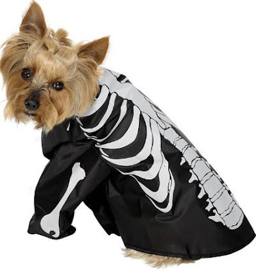 Skeleton Dog Halloween costume
