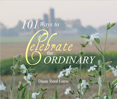Buy 101 Ways to Celebrate the Ordinary by Diane Reed Loew, A Gift Book