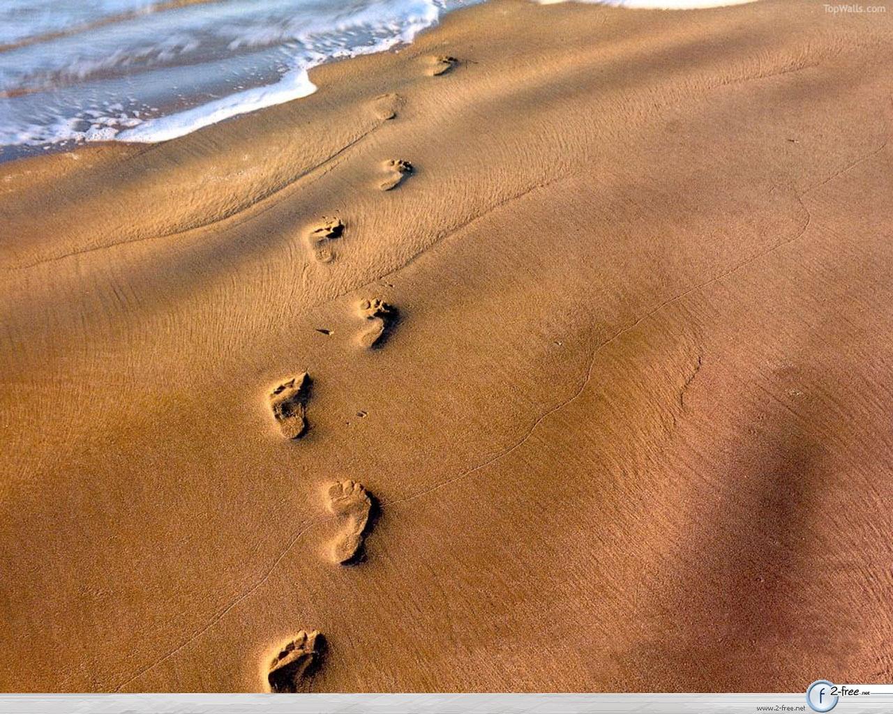 http://1.bp.blogspot.com/_p5YxXqqs_UU/S9g8xtiyyUI/AAAAAAAABA8/wezqYYYL3Ms/s1600/footprints_in_sand_wallpaper.jpg