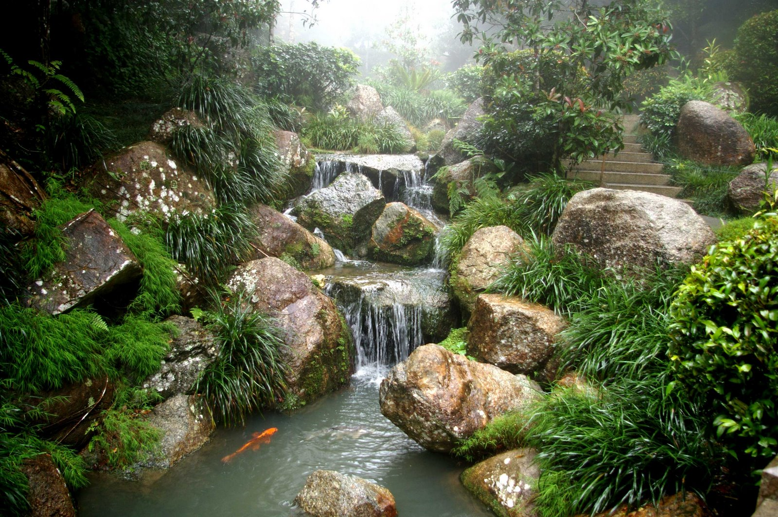 If you 39 re going through hell keep going september 2010 for Zen garden waterfall