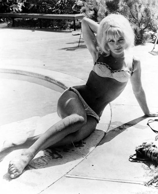 Elke Sommer Nude - 9 Pictures: Rating 8.34 out of 10