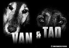 VAN & TAO