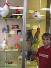 Peter with his Chicken Display at the Library