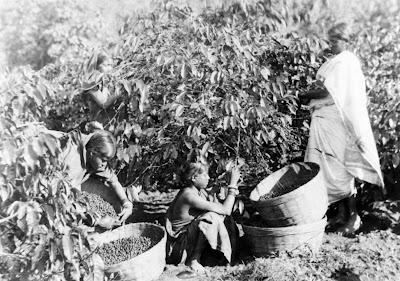 1886 in India