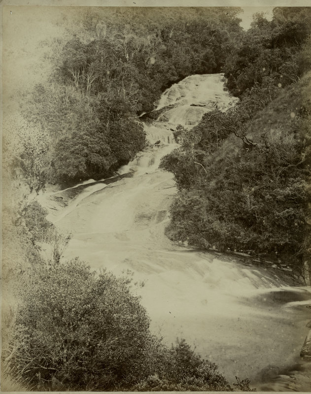 View of Rapids