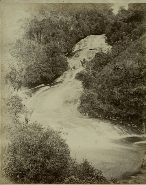 c.1890%2527s+PHOTO+INDIA+CEYLON+VIEW+OF+RAPIDS