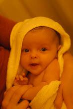 Mollie - 2 Months