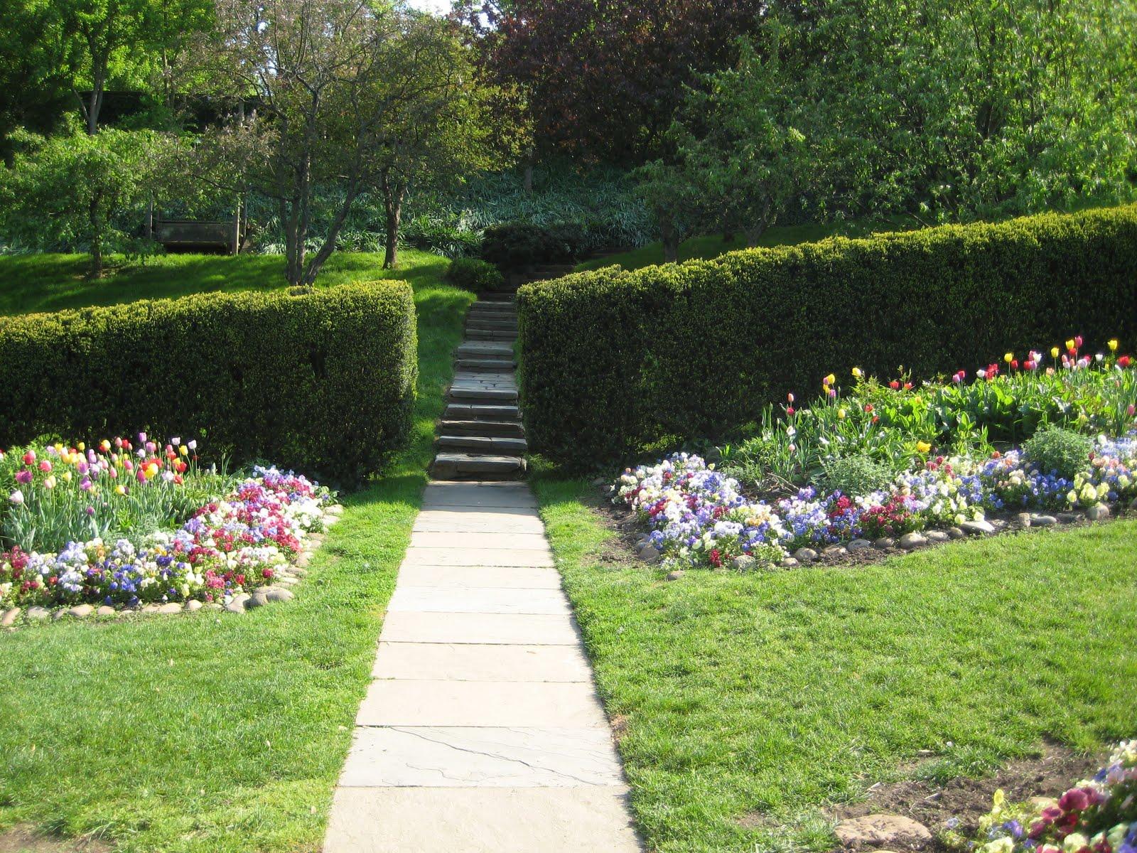 The Gardener 39 S Eye Dumbarton Oaks In April