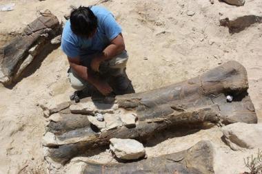 longest dinosaur bone