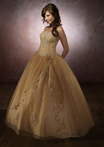 Gorgeous Wedding Dress Gold Wedding Dress