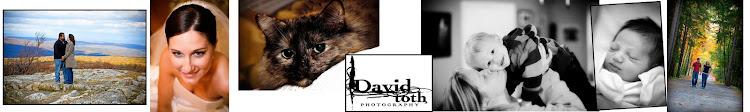 David Toth Photography