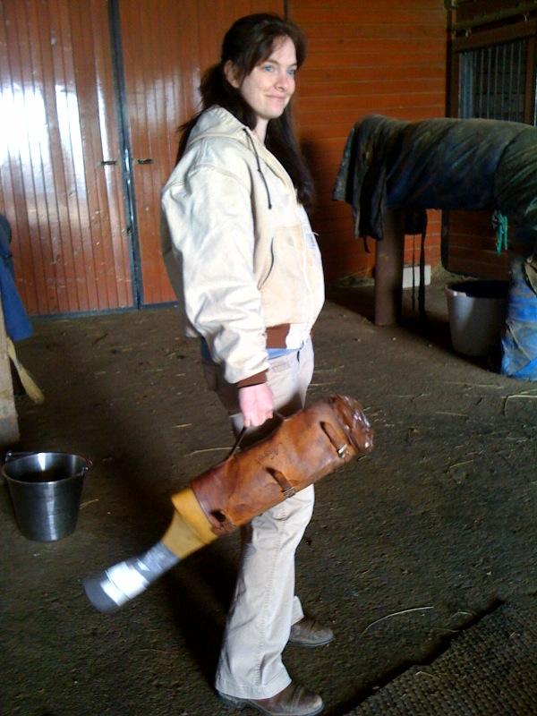 horse condom handjob