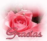 GRACIAS A TI M. JESÚS