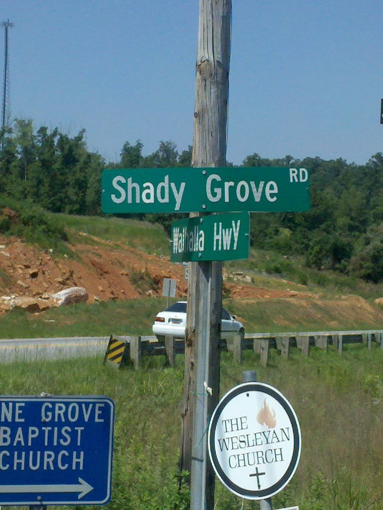 South Carolina Business Law Blog Shady Grove And Class