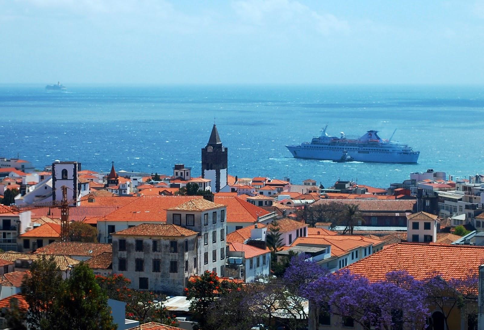 Foto do dia Portal NetMadeira Flores da Madeira