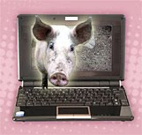 svinjska gripa Meksiko spam e-mail