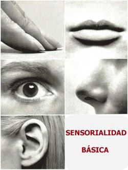 [sensorialidad.jpg]