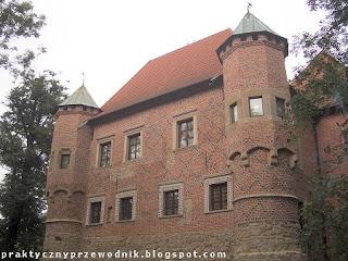 Zamek w Dębnie k. Tarnowa