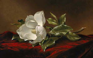 My Favorite Magnolia Painting