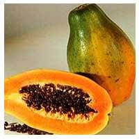kandungan nutrisi buah pepaya