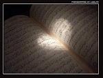 Quran Explorer.com