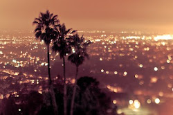 My Paradise..