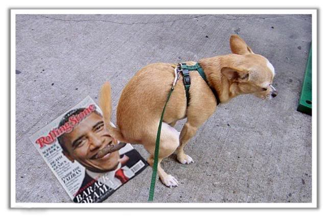obama getting pooped on