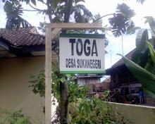 TOGA ( Tanaman obat keluarga ) Sukanegeri 1
