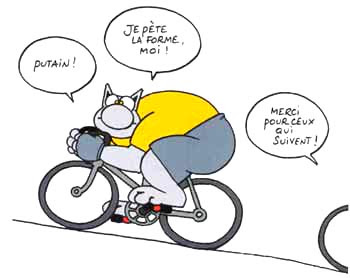 Mot Escalier EXTREM' - Page 2 Chat-velo