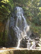 Virtaavien vesien tykö