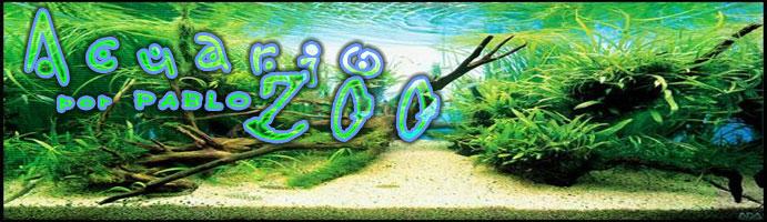 AcuarioZoo
