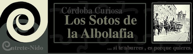 Sotos de la Albolafia