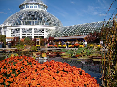 Maples And Autumn Have Thing For Each >> Growing with plants: New York Botanical Garden - more autumnal inspiration