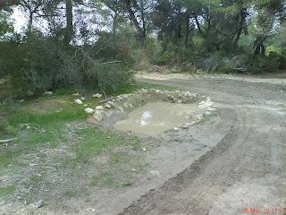 balsa agua pinares de Zuera jabali