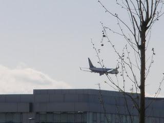 Avión aterrizando Zaragoza