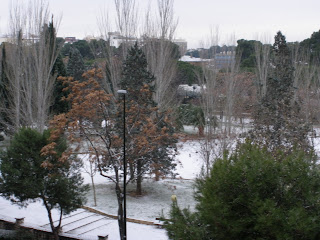 Parque Pignatelli nevado 2009 Zaragoza nieve