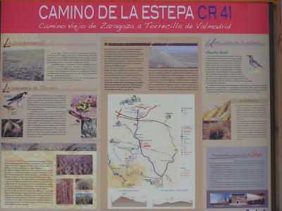 CR 41