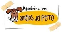 Amigos del Perro