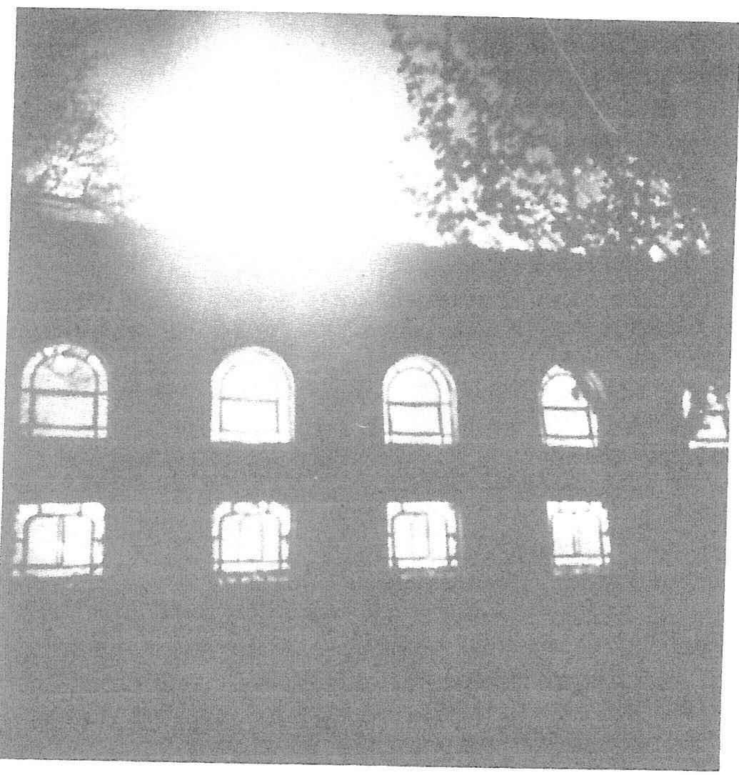 בית הכנסת בעיר לער בגרמניה בליל השריפה