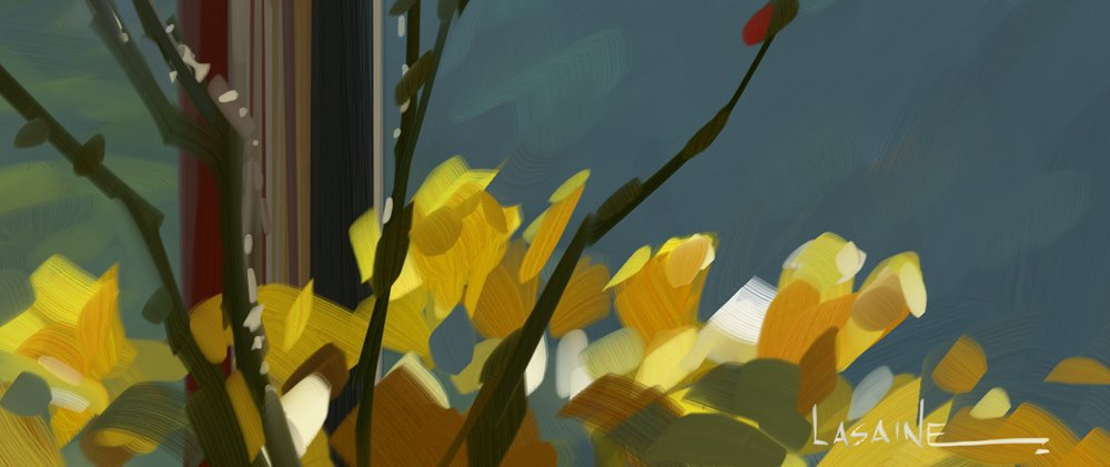 [Flower+Sketch+2.jpg]