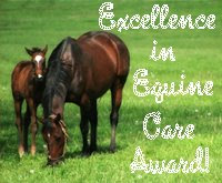 Excellence In Equine Care Award