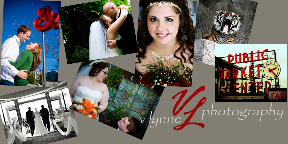 V Lynne Photography Blog