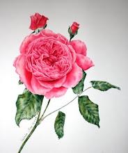 ดอกไม้จากปลายพู่กัน
