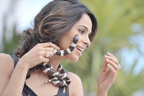 Mallika Sherawat Snake