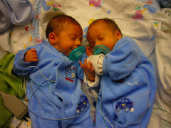Daniel & Cameron-2 weeks old in NICU